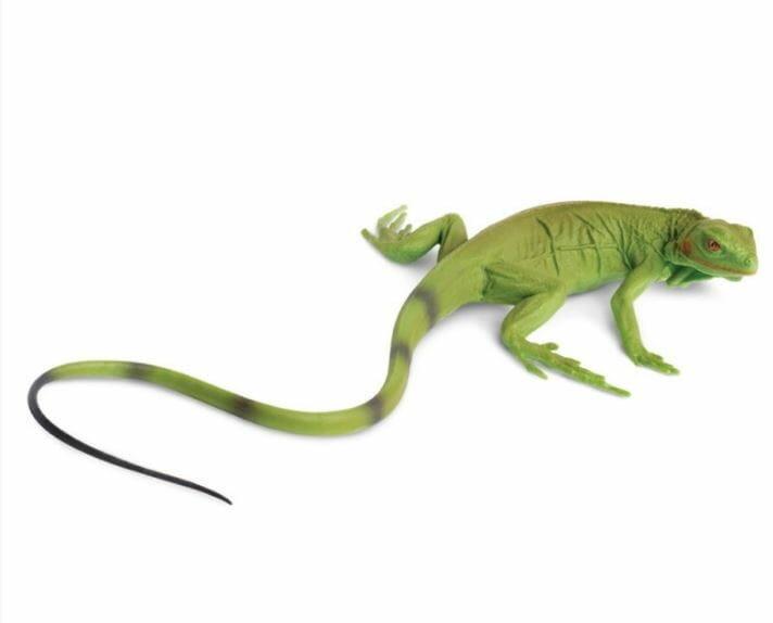 картинки из игры ящерицы потолка периметру