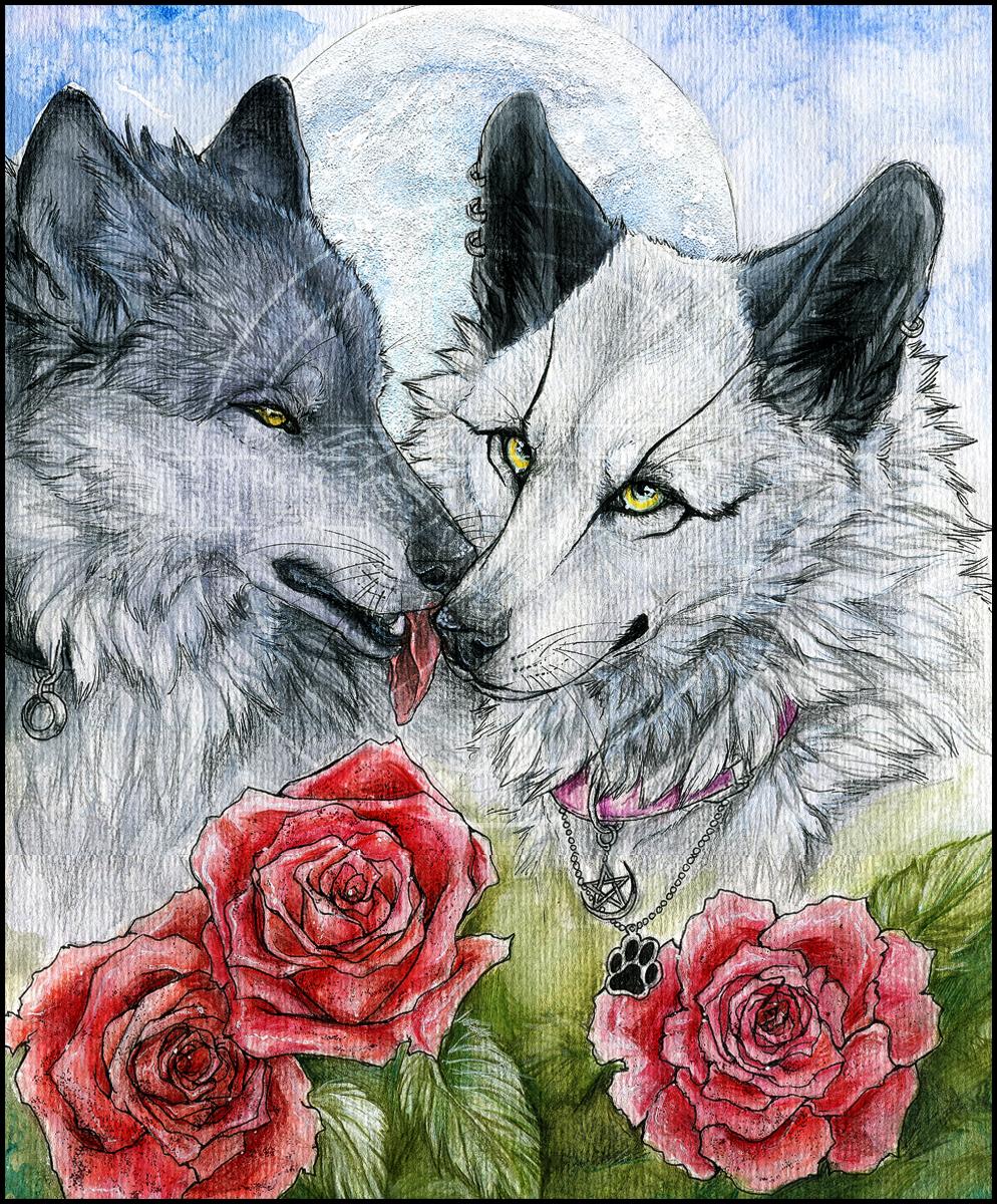 отличный картинки волк с розами кирилюк проживает
