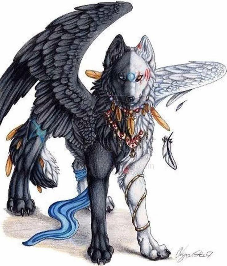 фото человека волка с крыльями нас работают