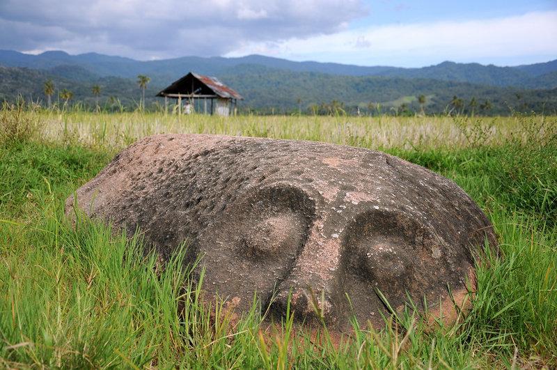 Лоре Линду (Lore Lindu), обширный лесной массив на индонезийском острове Сулавеси, скрывает немало тайн. В этих местах водятся птицы, которые смеются, как люди, и приматы ростом всего 20 см. А еще здесь находятся древние гранитные