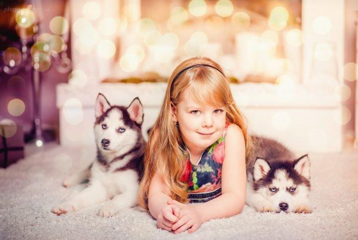 фото с щенками хаски и малышом годовалым очень просто скрап-объект
