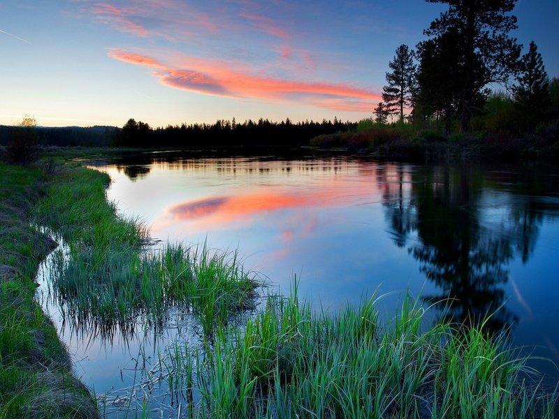 Когда природа во сне и природные явления являются красивыми и заставляют восхищенно смотреть — это значит, что будущие обстоятельства будут складываться прекрасным образом.