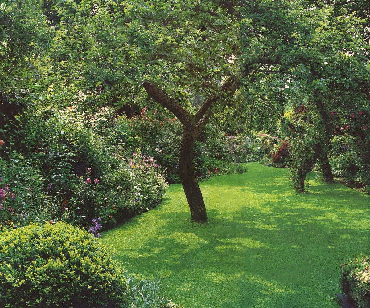 посаженный сад