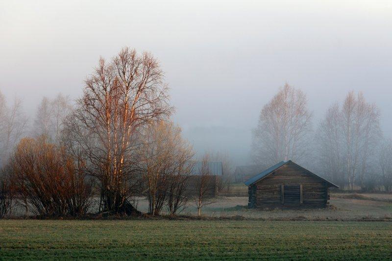 туман  и домик