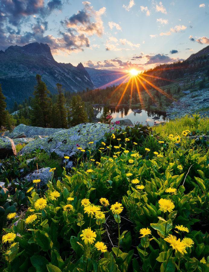 яркие картинки с природой с добрым утром есть воспевание соболиных