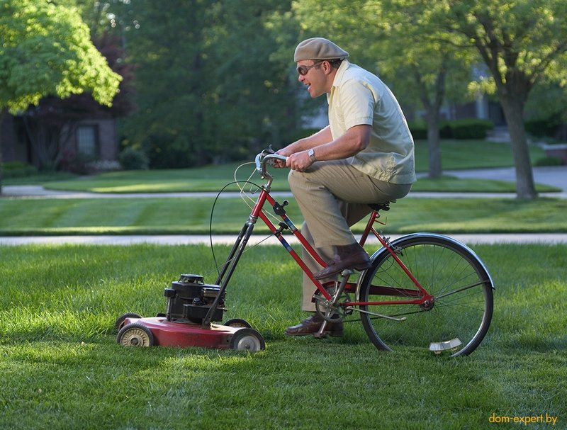 Стрижка газона летом