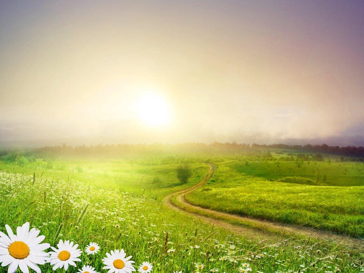 Картинки солнечные летние