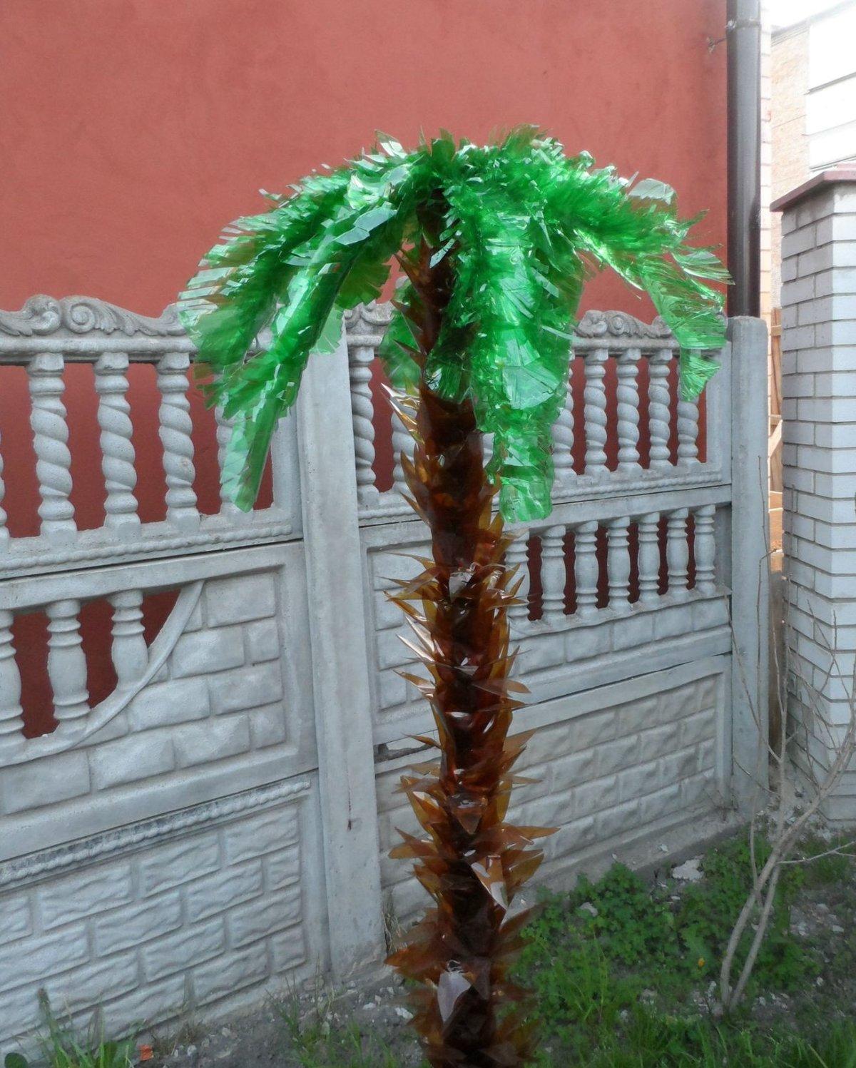 Пальмы своими руками картинки