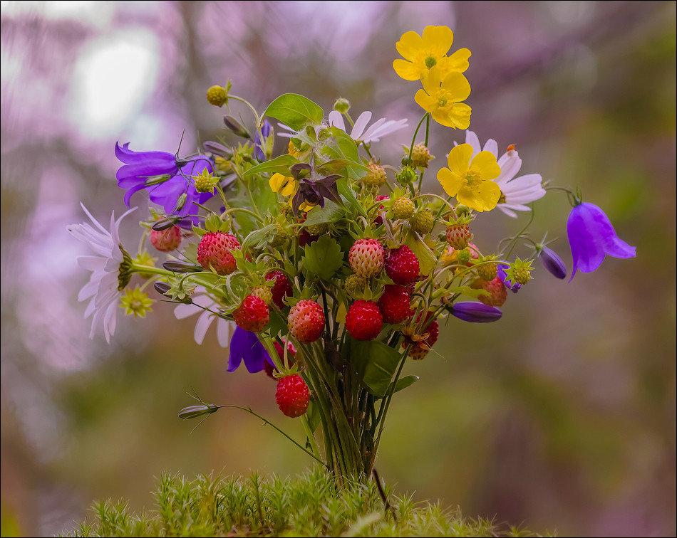 костюмы полевые цветы фото любимой ищете прозрачные