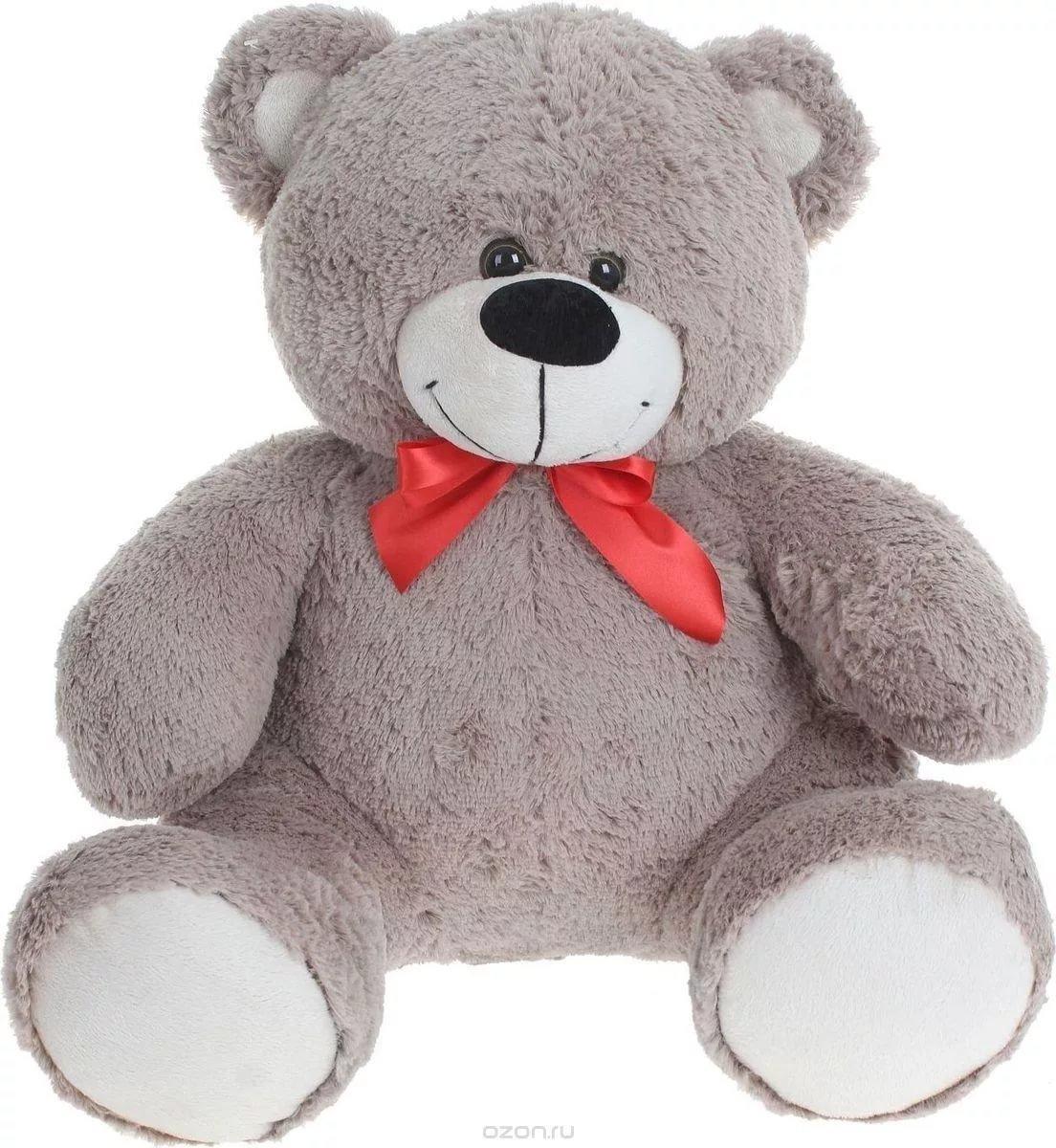 Февраля мужчине, картинки плюшевые медведи для детей