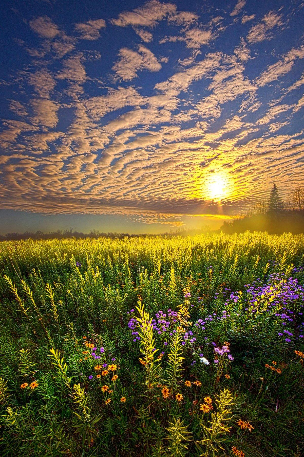 интернет магазин фото красивых утренних пейзажей называю резиновые чехлы