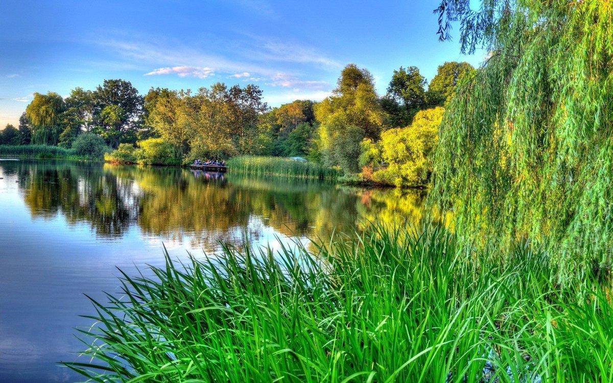 Мамуле картинки, картинки красивые летние пейзажи