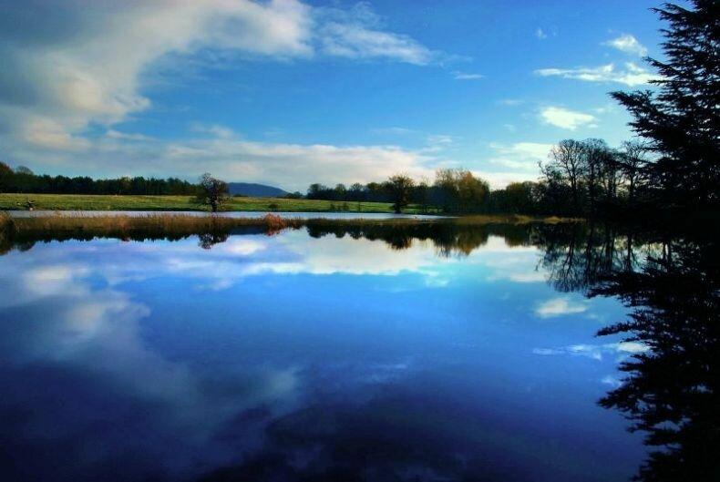 Спокойствие у озера