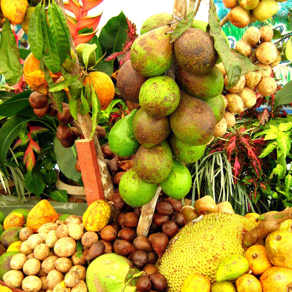фрукты малайзии фото это
