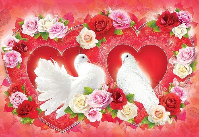 Открытка голуби и сердце, картинки надписью смешно
