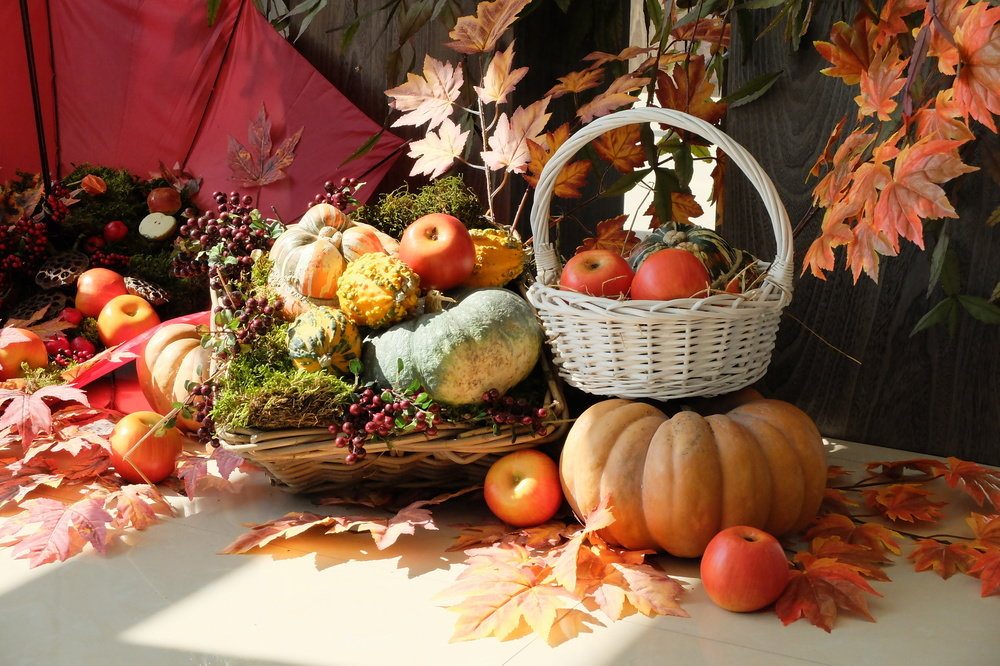 картинки на дары осени самые прекрасные светильники грильято