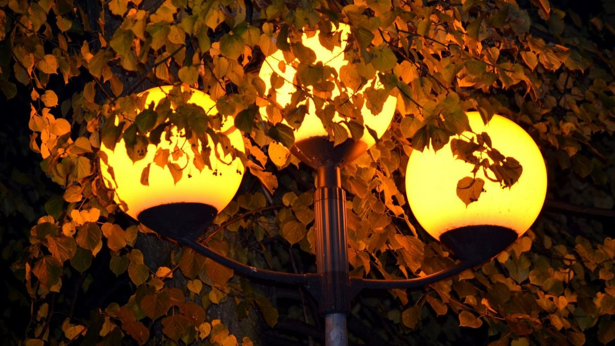 Открытки осень ночь