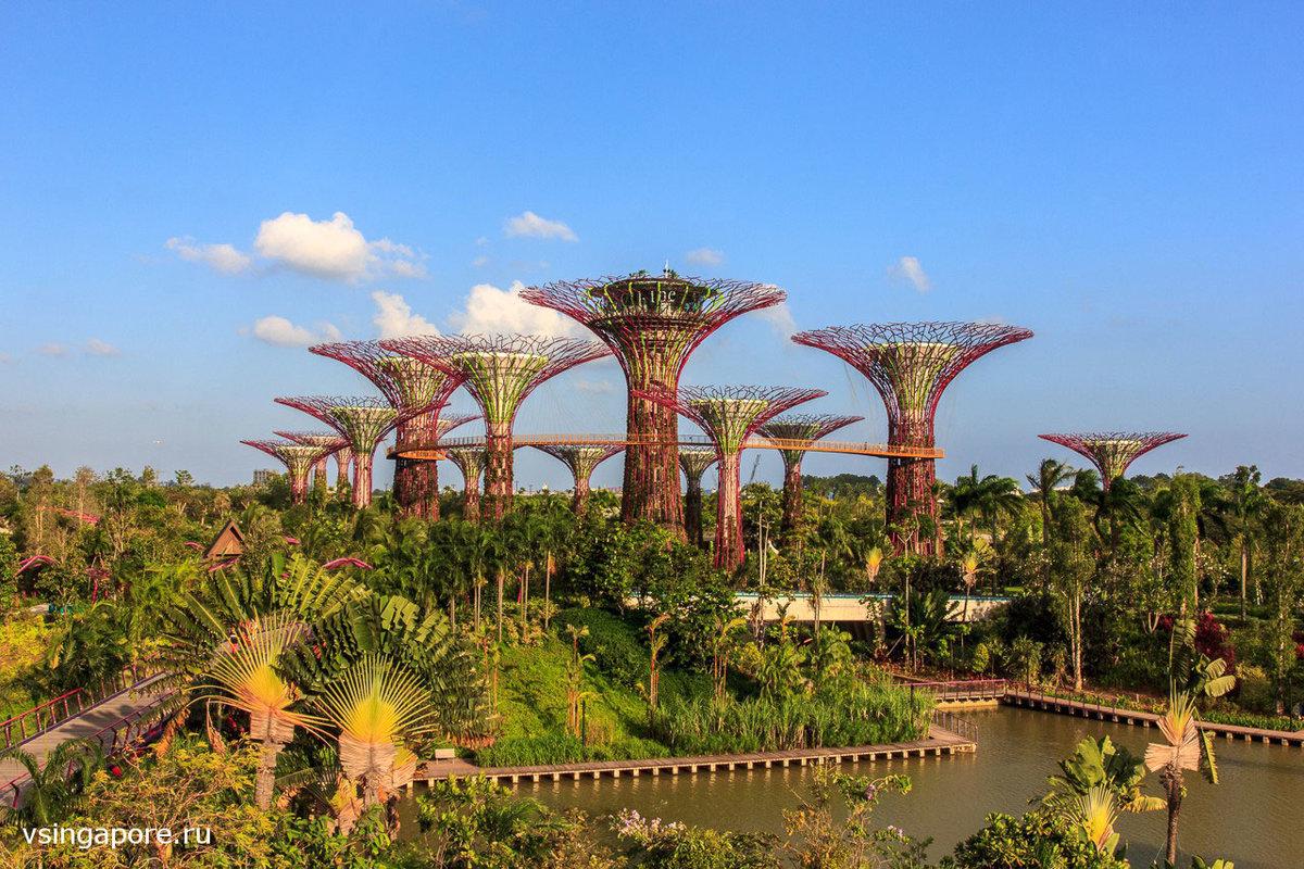 Сингапур достопримечательности сингапура видео