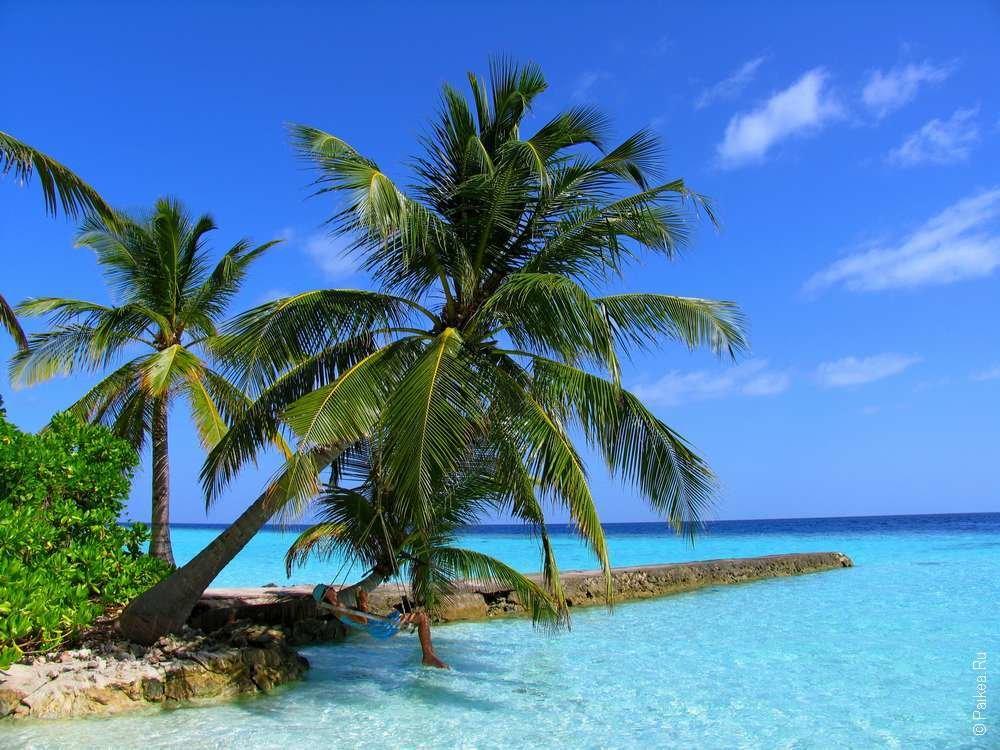 Мальдивы погода по месяцам сезон