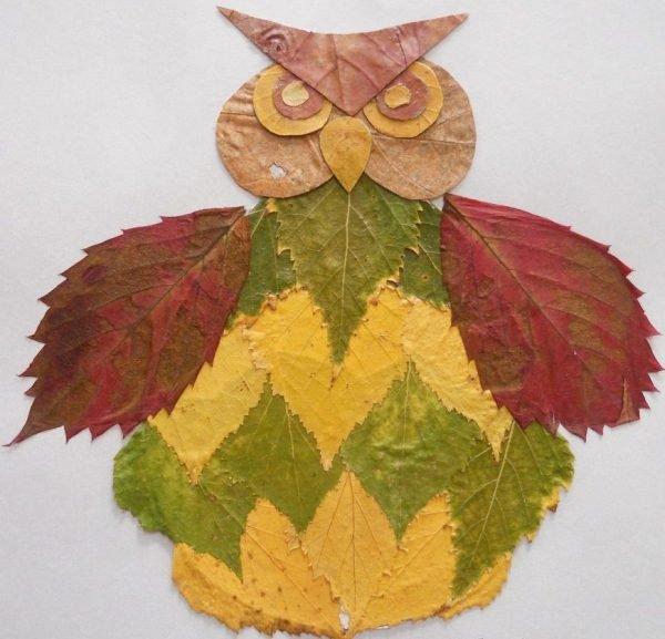 квартиру рисунки из листьев сова хотите, можете