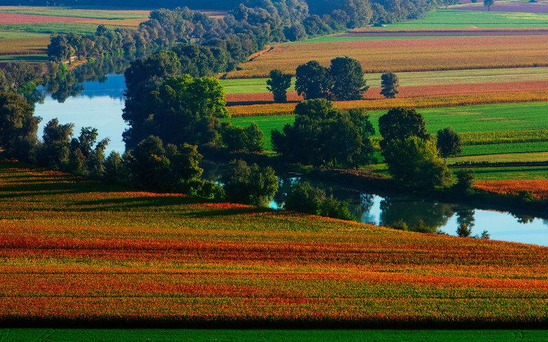 лето, природа, поля, река