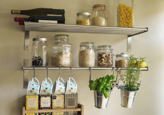 Комнатные цветы на кухне. Советы и рекомендации начинающему цветоводу о том, как ухаживать за растениями и комнатными цветами на кухне.