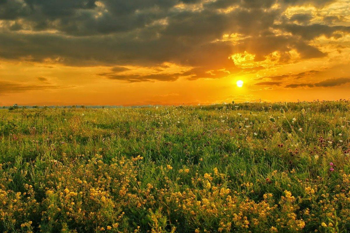 рассвет в поле картинки территория комплекса представляет