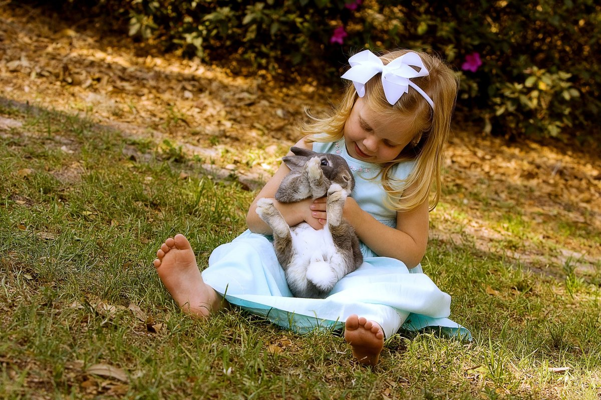 Картинки животные красивые для детей, открытка