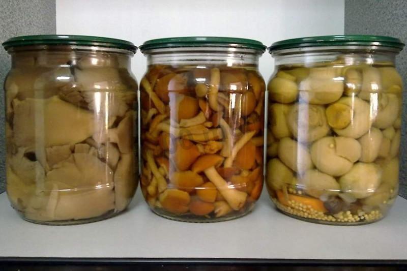 Рецепты грибов на зиму в банках консервирования