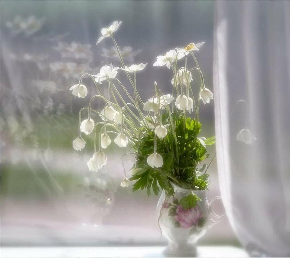букеты на окне весной действительно, очень