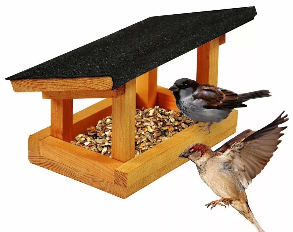 Картинка кормушка с птицами на прозрачном фоне