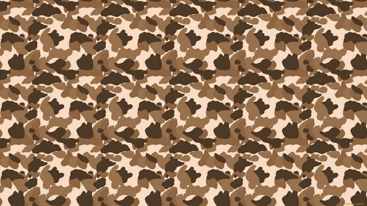 picture-of-army-camouflage-closeup