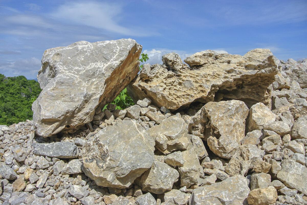 Известняк камень картинка