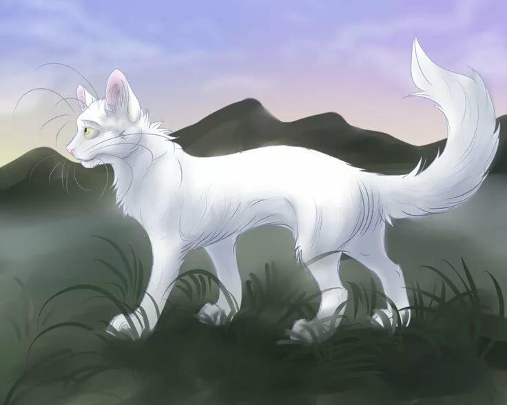 картинки котов воителей белолапка приспособление