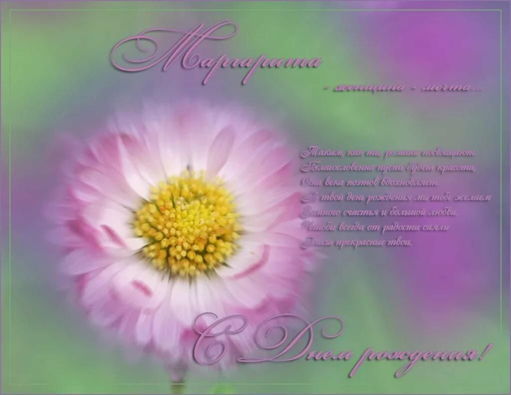 маргаритка с днем рождения картинка цветовая