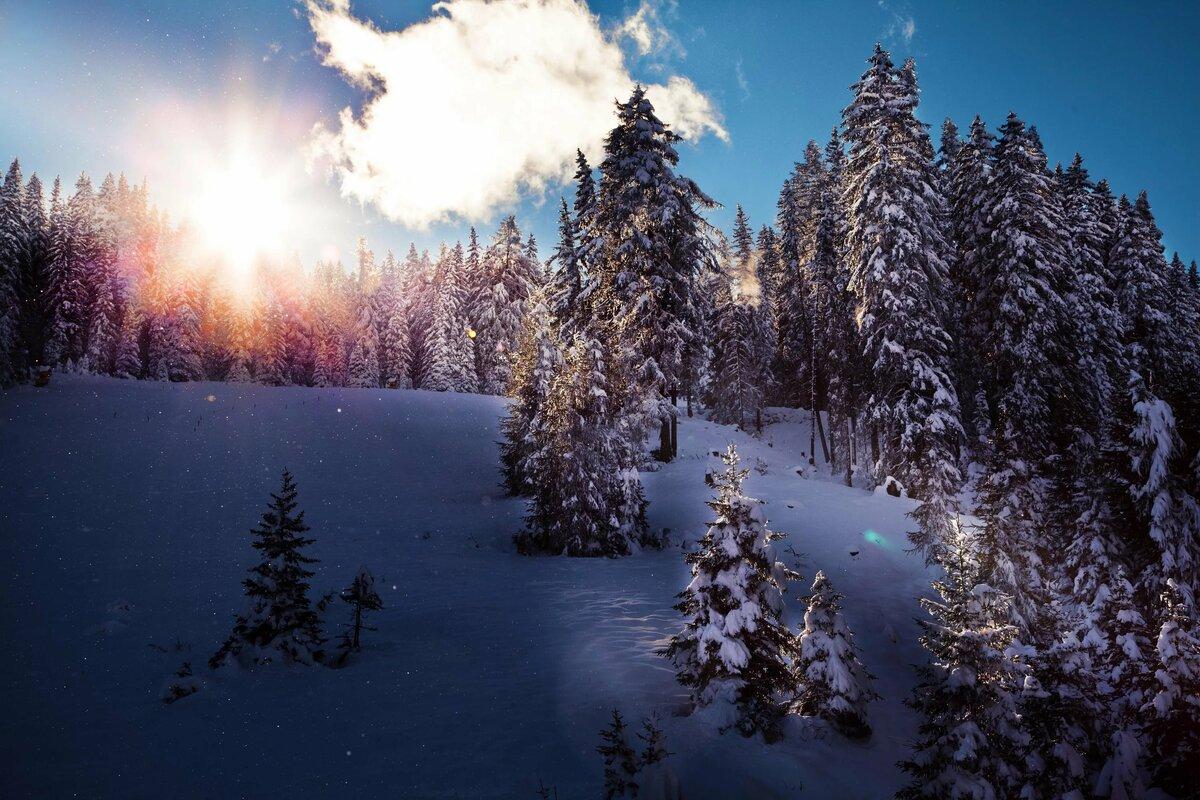изображении раскрывается картинки зима для компа месяц покушение