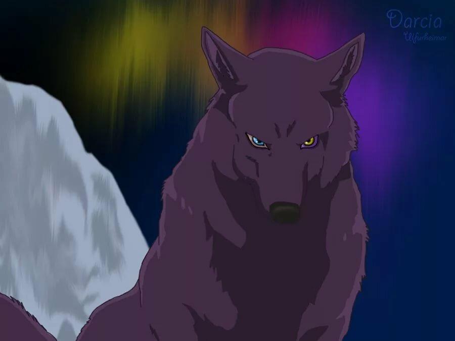 Дарсия волчий дождь картинки