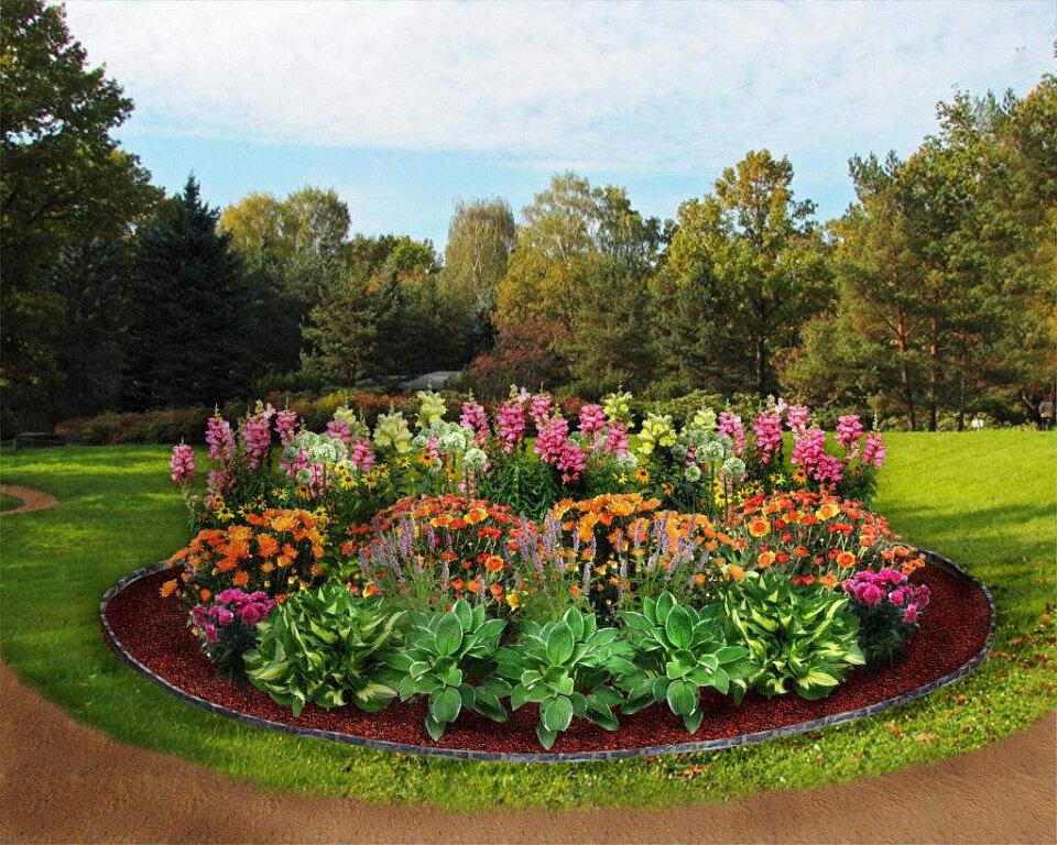 Цветники на дачном участке картинки