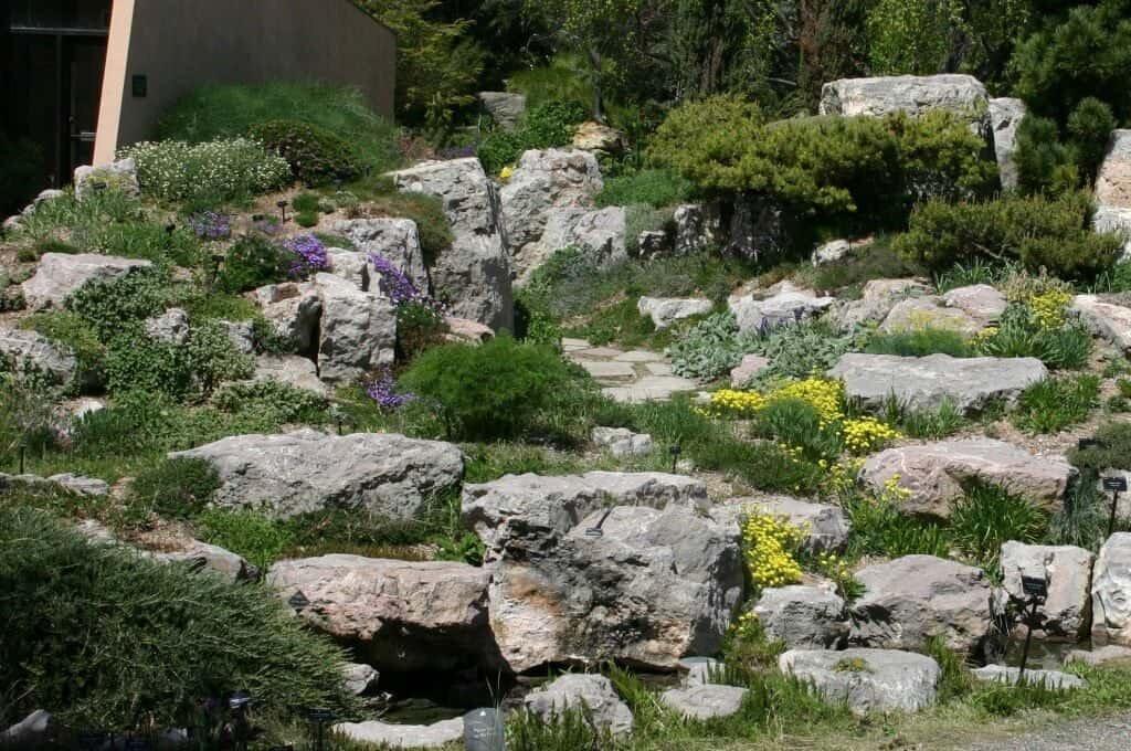 круг для альпинарий в саду фото сих
