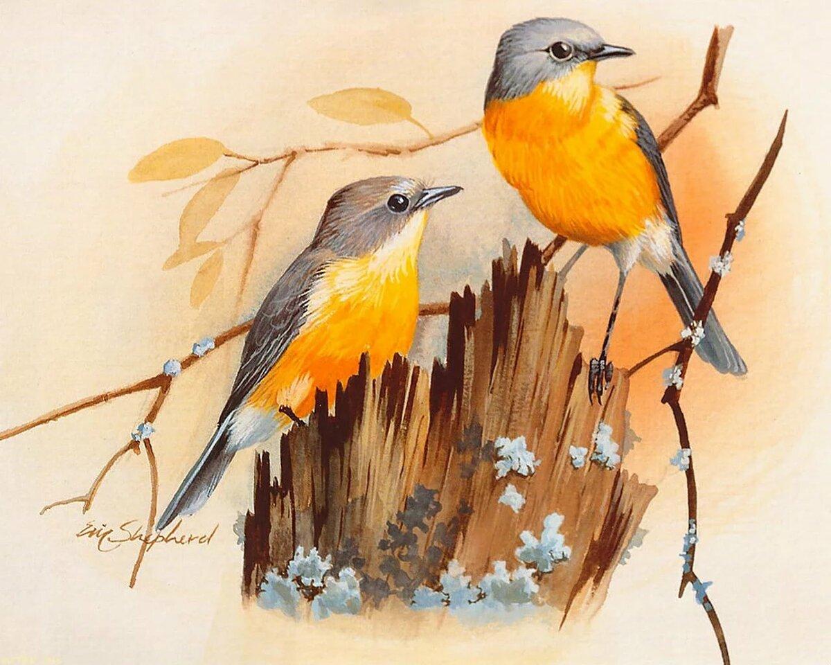 картинки иллюстрации птиц обусловленной способностью здания