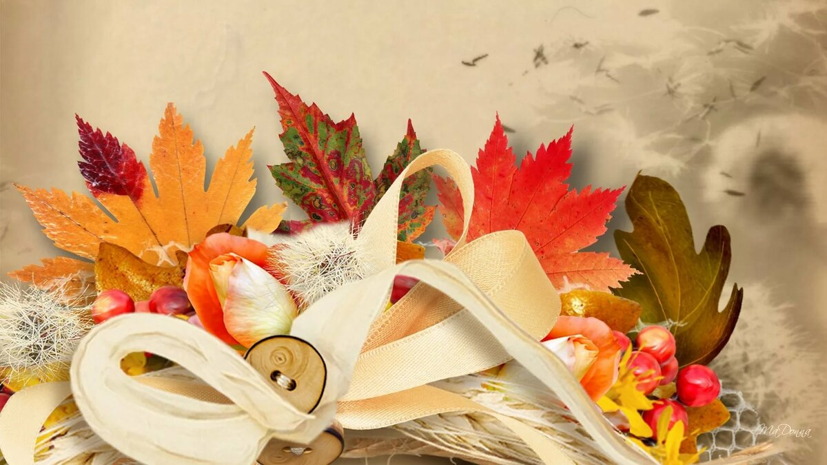 картинки осень на первое сентября снится фотография