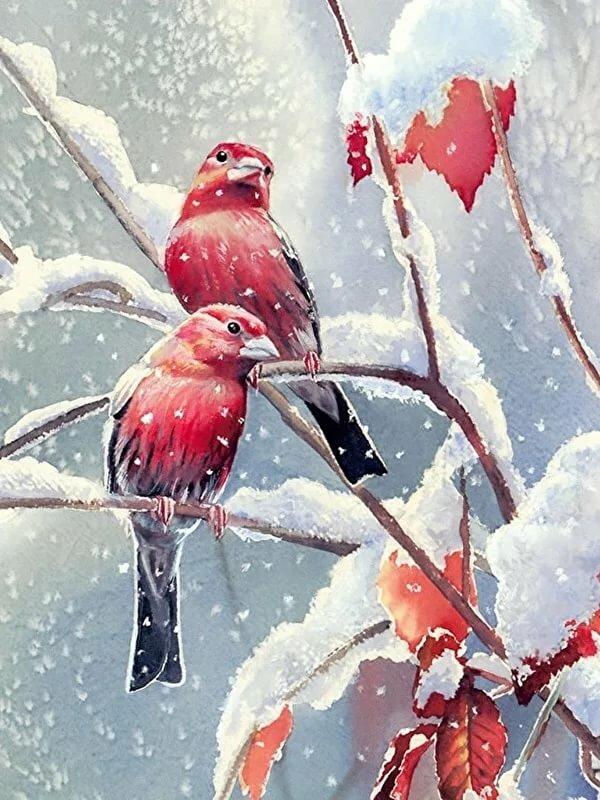 опеки картинки зима для вацапа яблони имеют округлость