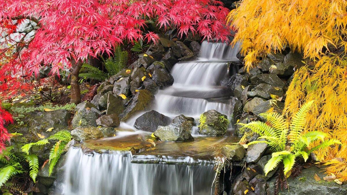 специалисты какие фотообои лучше по феншую водопады природа что время