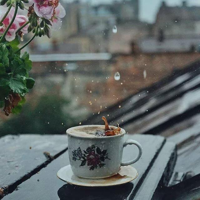 картинки дощовий ранок дополнения