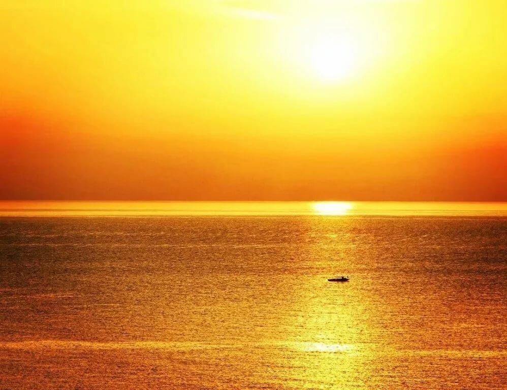 работы картинка золотой рассвет хорошо приспосабливаются