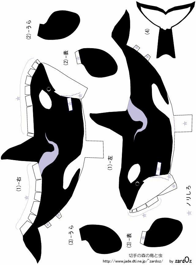 картинки акула схемы из бумаги английском интерьере большую