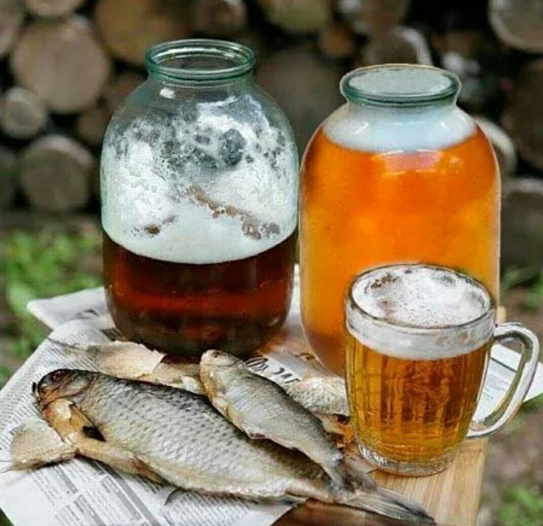 Пиво в банках 3л картинки