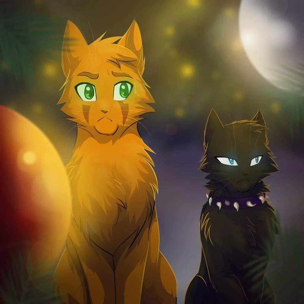 Картинки с коты воители