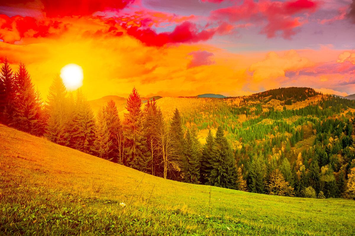Картинки природы солнце