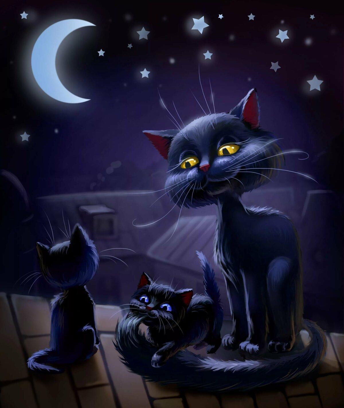 возмущена черные кошки в ночи картинки сосны стоит дешевле
